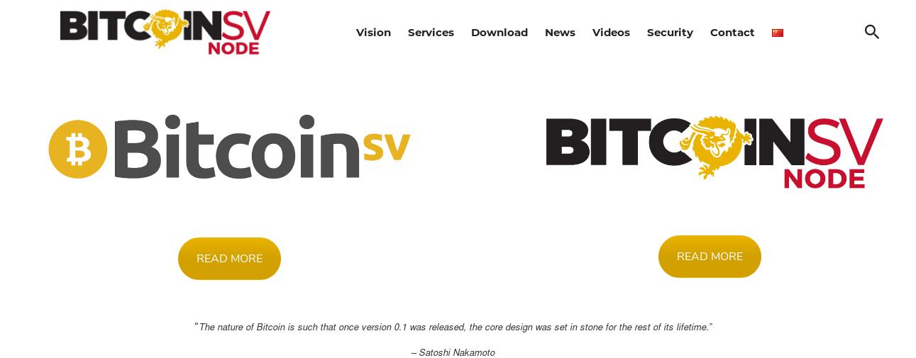 Bitcoin Satoshi Vision & BSV Node 2019