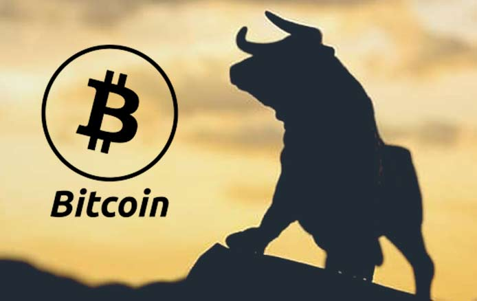 Bull Run of Bitcoin